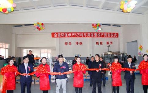 四川金素环保科技有限公司正式投产